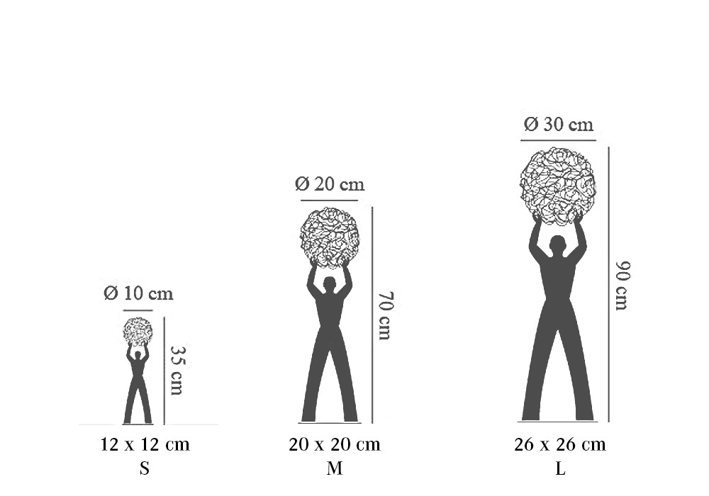 Catellani & Smith | Tischleuchte | Uomo Della Luce Grafik
